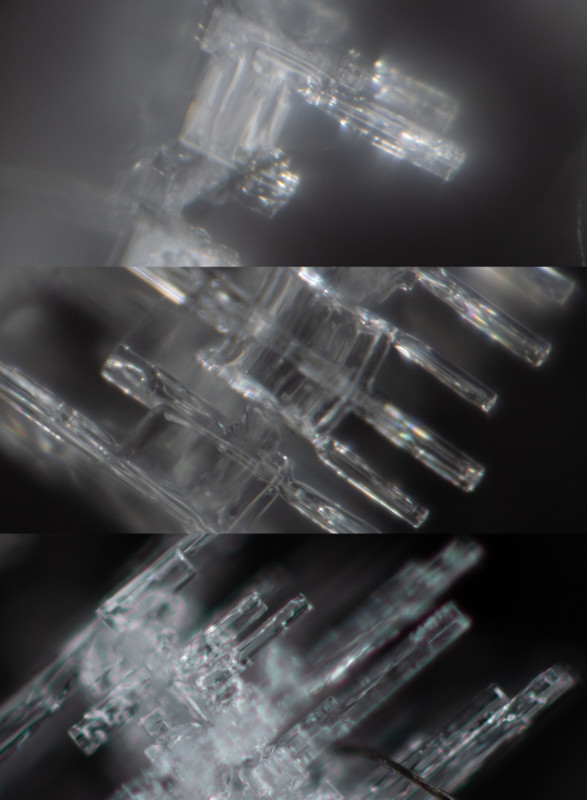 Lente Macro Mitakon 85mm 1x-5x rediseñado